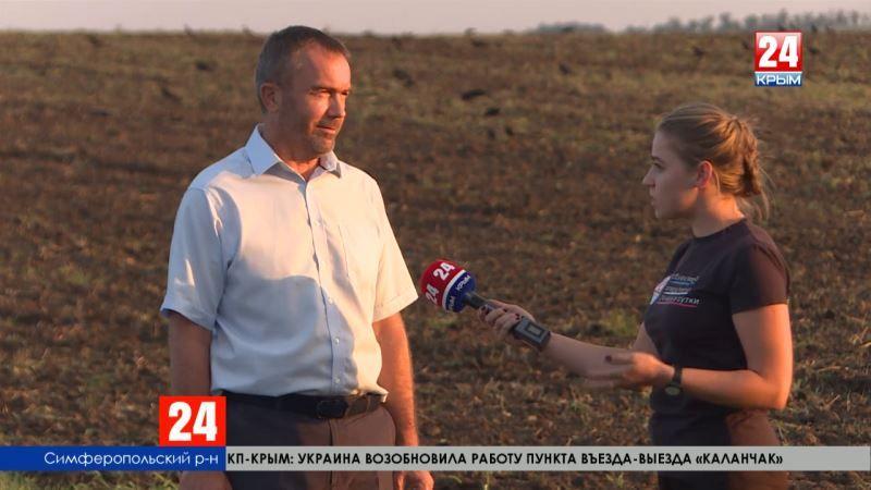Крымские аграрии намолотили 906 тысяч тонн зерна. Теперь убирают поздние зерновые и технические культуры, и готовят землю под посев озимых