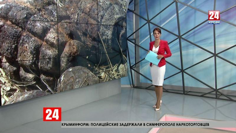 Без права на ошибку: в Крепости «Керчь» пиротехники провели разминирование