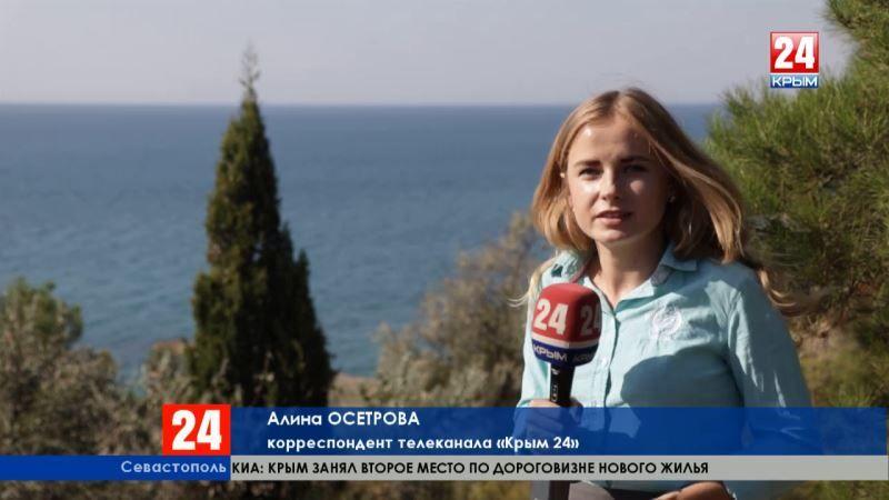 Старинные корабли у берегов города-героя. Прямое включение корреспондента «Крым 24» из Севастополя