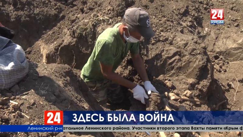 Здесь была война. В Крыму продолжаются поиски останков солдат, погибших в годы Великой Отечественной войны