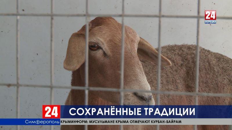 Мусульмане приносят в жертву баранов и коров. Курбан-Байрам празднуют во всём Крыму