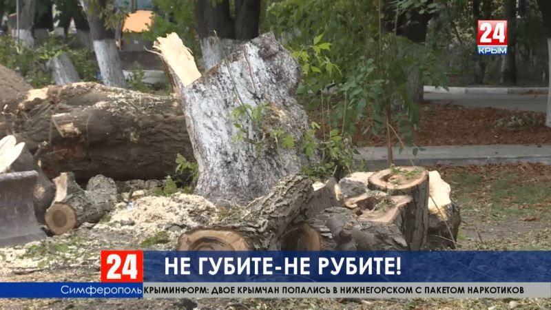 Симферопольцы бьют тревогу: в городе вырубают деревья