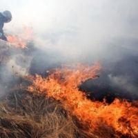 Не допустить загорания в экосистемах Крыма