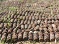 В бухте возле крепости Керчь ищут боеприпасы