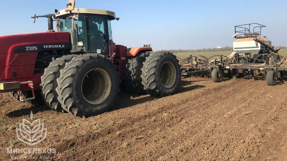 Андрей Рюмшин: Крым засеял более 80% озимых зерновых