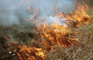 Крымчан предупредили о четырех пожароопасных днях