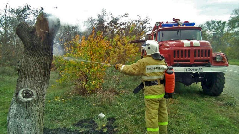 Сотрудники ГКУ РК «Пожарная охрана Республики Крым» ликвидировали возгорание сухой растительности, предотвратив дальнейшее распространение огня