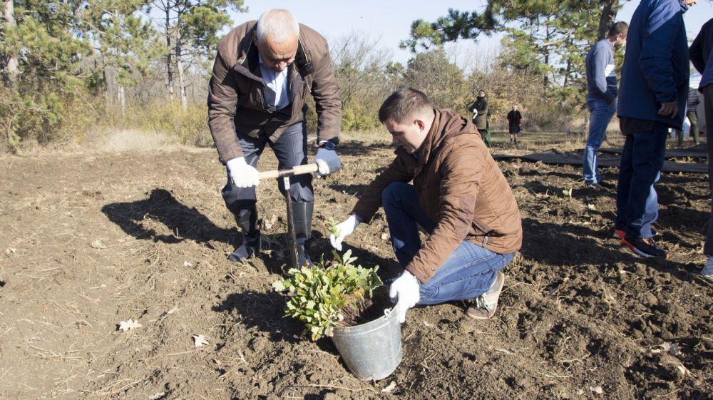 Виталий Глотов принял участие в акции «Живи, Лес!»