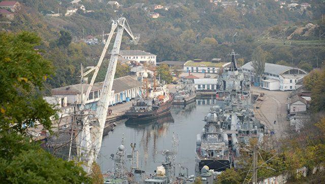 Формирование мира: в Севастополь съехались представители 10 арабских стран