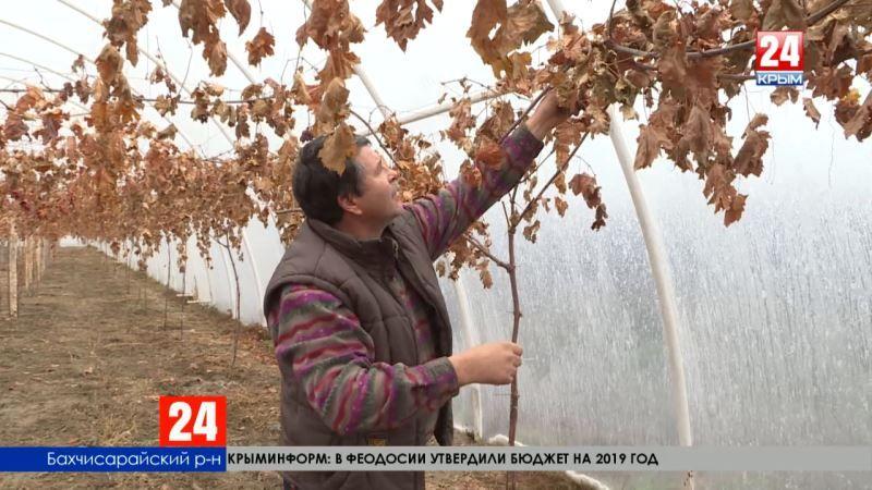 Государственная помощь для фермеров – ущерб в случае потери урожая компенсируется полностью