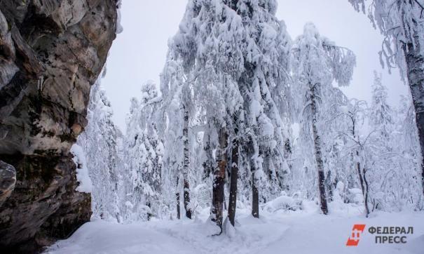 Около 300 человек провели ночь в горах Крыма из-за схода снега