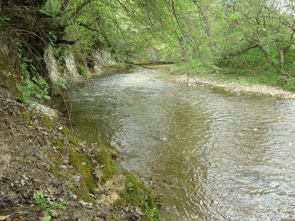 ЧП в Крыму: автомобиль угодил в реку