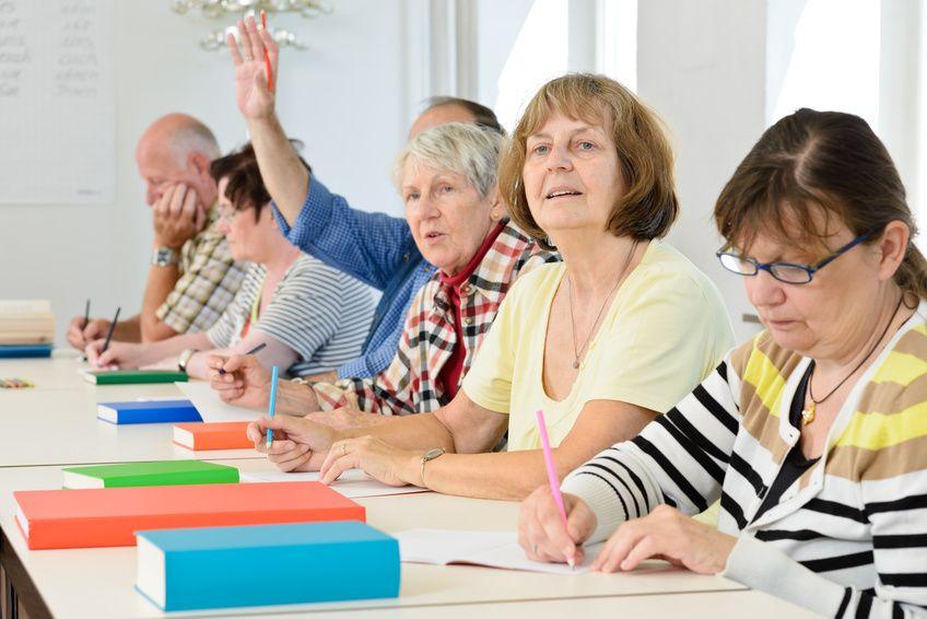 Программа профобучения предпенсионного возраста расчет пенсии в мвд в калькуляторе