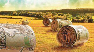 На развитие в Крыму фермерских хозяйств будет выделено в этом году более 140 млн рублей