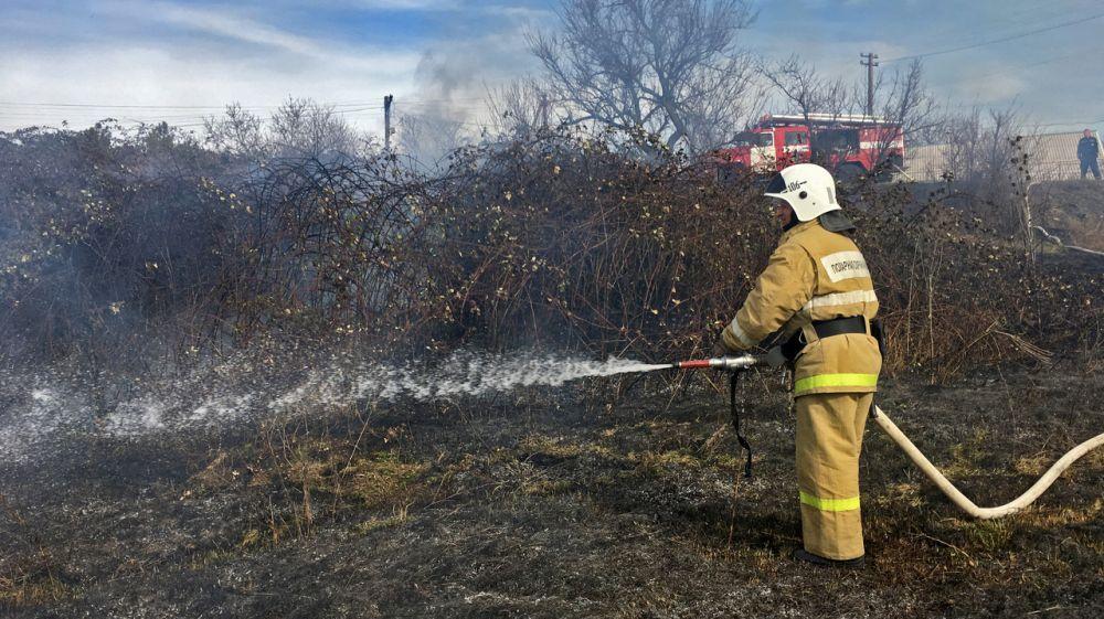 МЧС Республики Крым: Бесконтрольное сжигание сухой растительности недопустимо!