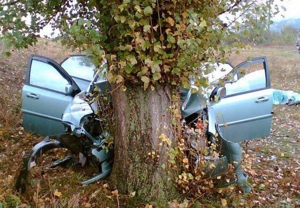 ДТП в Крыму: мужчина врезался в дерево и оказался зажат в машине