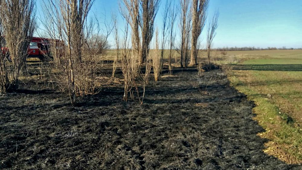 За прошедшие сутки крымские огнеборцы 6 раз привлекались к ликвидации возгораний сухой растительности