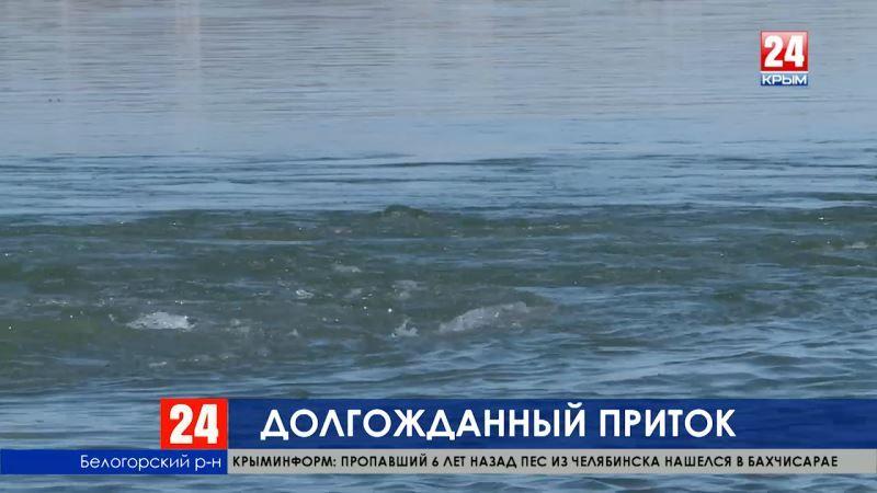 «Крым полностью обеспечен водой на 2019 год», - Государственный комитет водного хозяйства и мелиорации РК