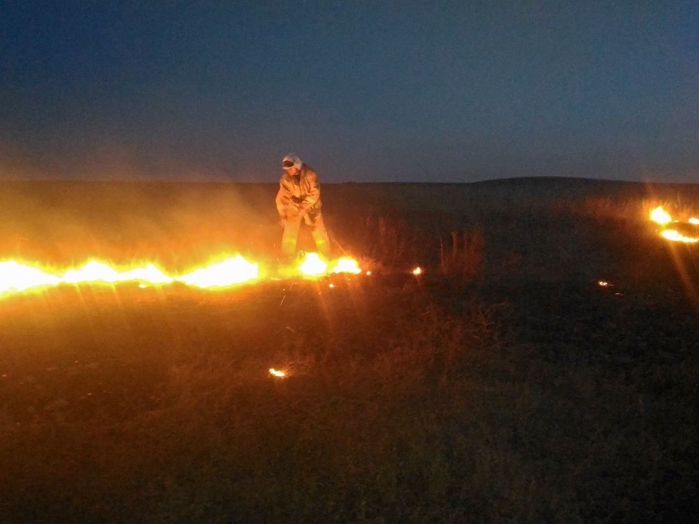Огнеборцы ликвидировали пожар в Симферопольском районе