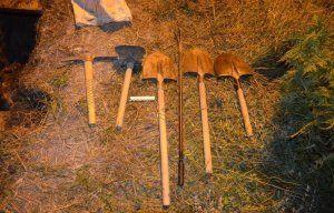 Под Симферополем продолжают грабить братскую могилу