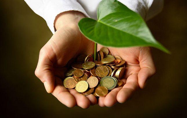 Крымские молодые сельхозспециалисты могут получить единовременную выплату