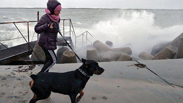 В ближайшие часы на Крым обрушится штормовой ветер