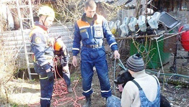 Маленькая жизнь: в Бахчисарае спасли упавшую в глубокий колодец собаку