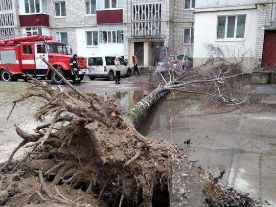 Из-за урагана на Украине продолжают гибнуть люди