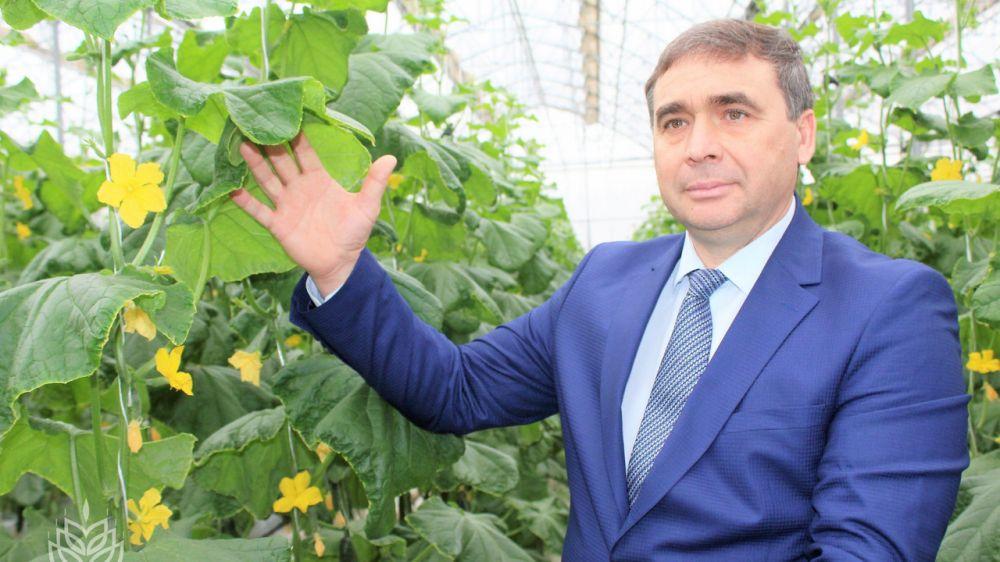 Андрей Рюмшин: Благодаря мерам господдержки, объем произведенной овощной продукции закрытого грунта за последние два года увеличился почти в два раза