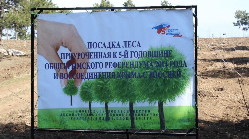 Геннадий Нараев: Лесовосстановление - одно из основных мероприятий по сохранению ландшафтного биоразнообразия Республики Крым