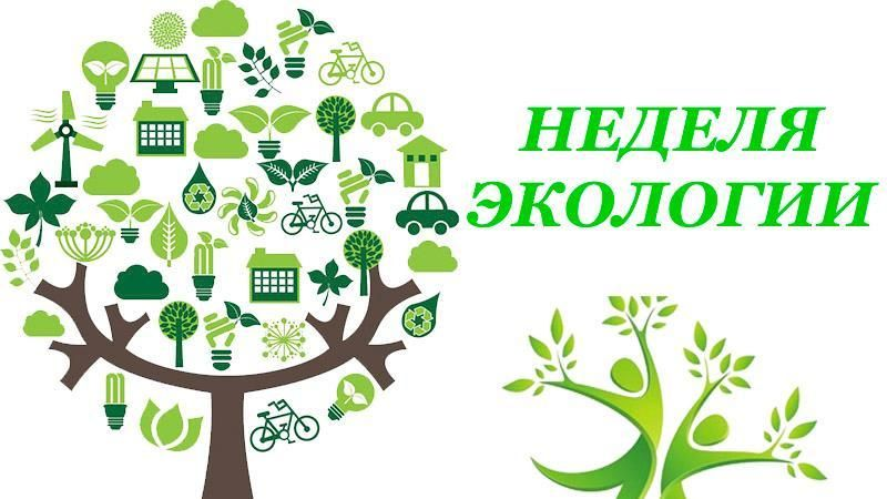 Минприроды Крыма при содействии Минкульта Республики Крым проведет природоохранное мероприятие «Неделя экологии»