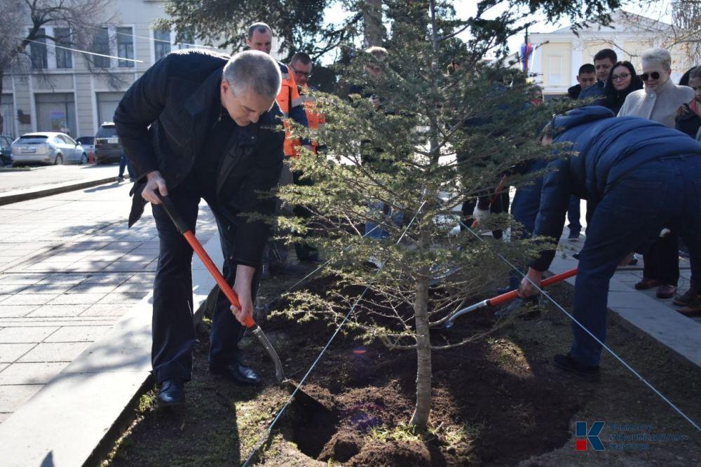 Сергей Аксёнов в честь празднования пятой годовщины воссоединения Крыма с Россией посадил дерево