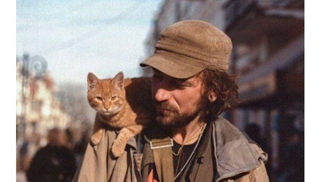 Апофеоз агрессии: как Крым взбудоражила смерть одного кота