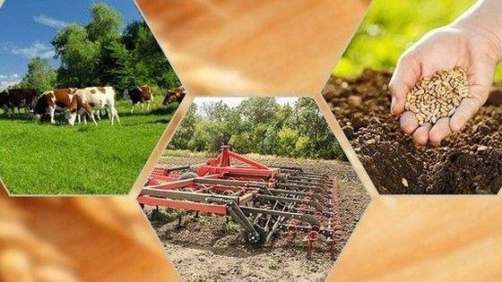 Вниманию сельскохозяйственных товаропроизводителей