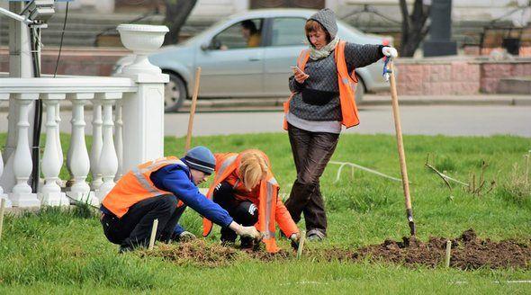 Симферопольские коммунальщики активизировали работу по уходу за зелеными насаждениями вдоль магистралей