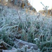Экстренное предупреждение о заморозках ночью и утром 19-21 апреля в Крыму