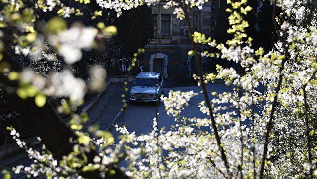 Весна, вернись: синоптики рассказали, когда потеплеет в Крыму