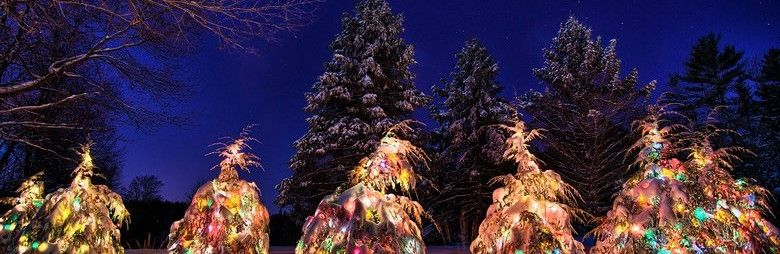 Крымчанина осудили на шесть лет за подрыв новогодней елки у здания администрации