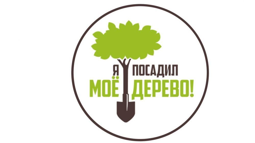 В Крыму продолжается акция по озеленению территорий муниципальных образований полуострова «Мое дерево!»