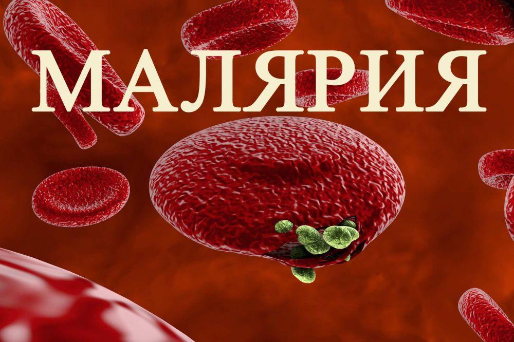 Ежегодно на территории Крыма выявляются случаи завозной малярии