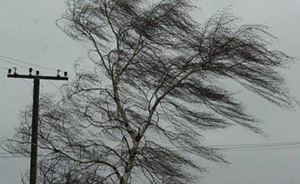 Метеорологи предупредили о непогоде