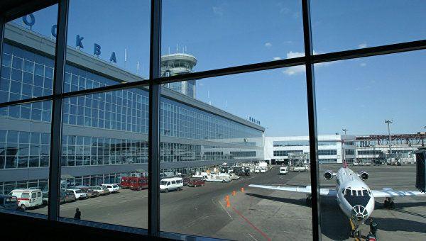 В каталке по аэропорту: в Москве на пьяного авиадебошира из Крыма завели дело