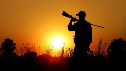 Минприроды Крыма сообщает о начале выдачи разрешений на добычу охотничьих ресурсов