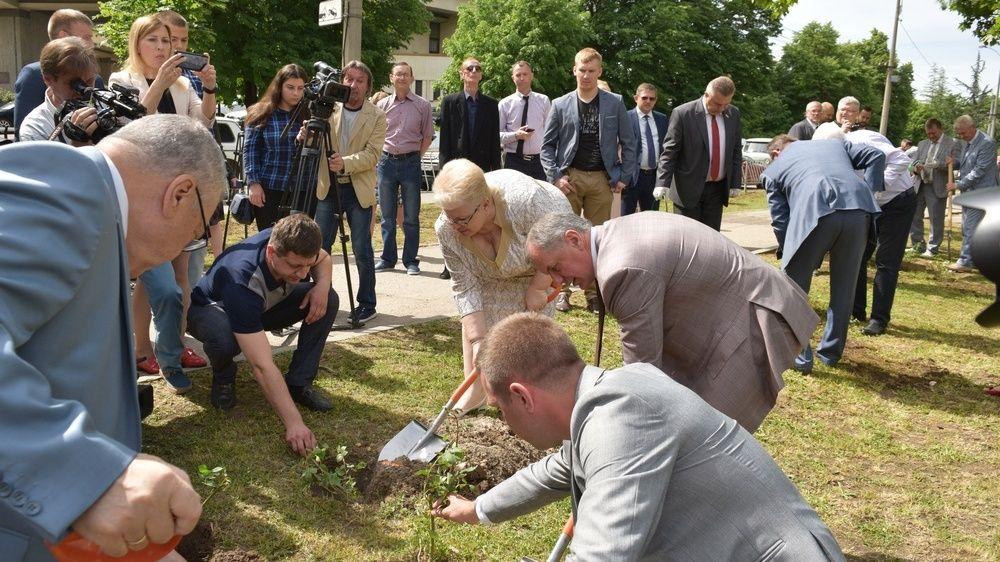 Розы - в честь юбилея парламента Республики Крым