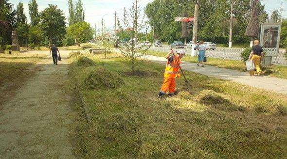 Симферопольские коммунальщики за неделю выкосили 130 тыс квадратных метров травы
