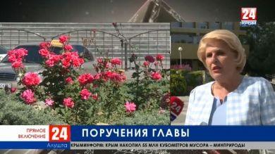 Результаты выездного совещания по проблемным вопросам Алушты. Прямое включение корреспондента телеканала «Крым 24» Елены Носковой