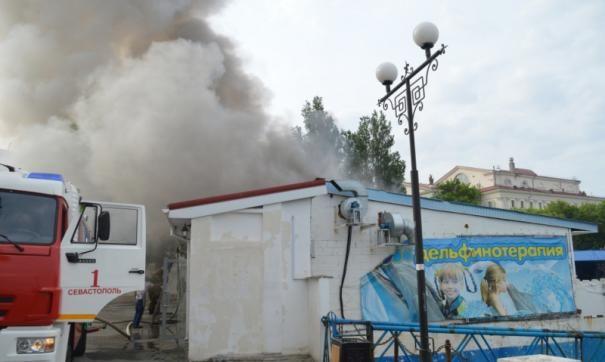 В Севастополе эвакуировали дельфинов из-за возгорания на набережной