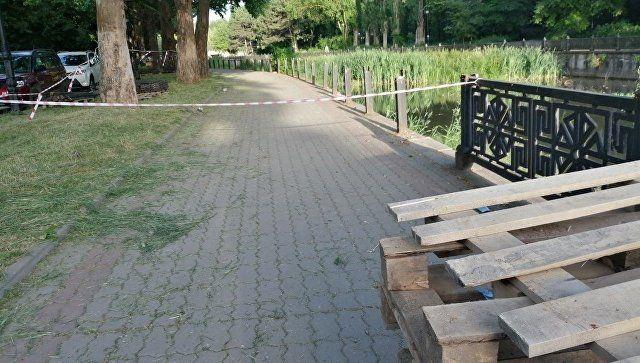 Реконструкция со сносом: на набережной Симферополя уберут 650 деревьев