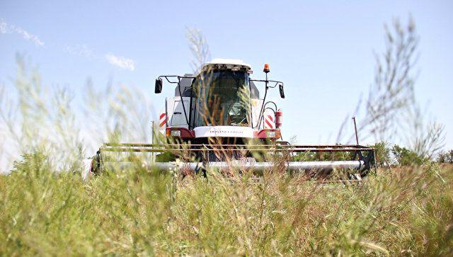 Битва за урожай: крымские аграрии могут остаться без комбайнов