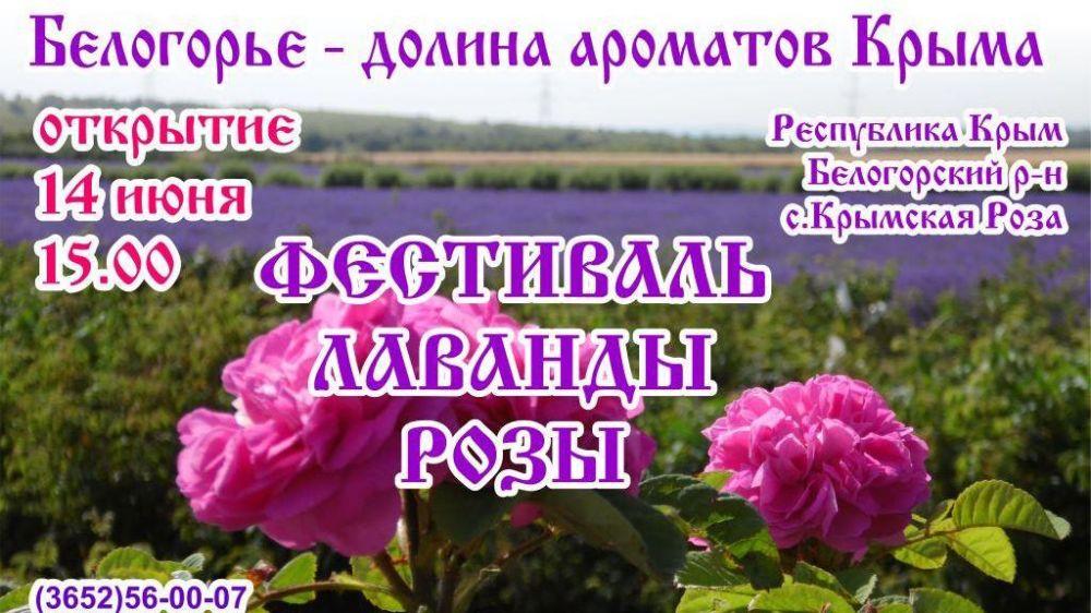 В Белогорском районе состоится Фестиваль лаванды и розы Крыма
